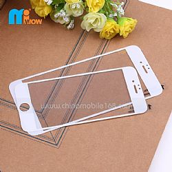 White Colour Full Screen Best Tempered Glass Screen Protector for iPhone 5 & iPhone 6